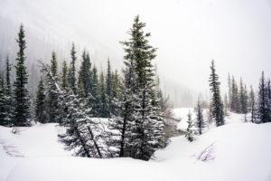 winterwonderland-4